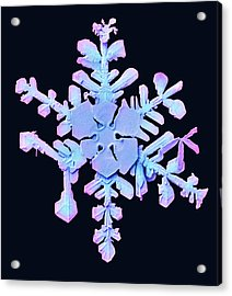 Snowflake Acrylic Print by Ars/us Dept Of Agriculture