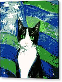 Cat With Stars And Stripes Acrylic Print