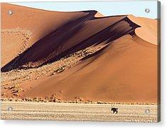 Africa, Namibia, Namib-naukluft Park Acrylic Print