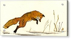 Red Fox Acrylic Print by Juan  Bosco
