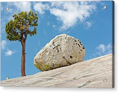 Usa, California, Yosemite National Park Acrylic Print