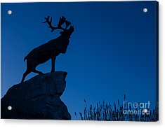 130918p142 Acrylic Print by Arterra Picture Library