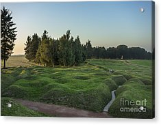 130918p146 Acrylic Print by Arterra Picture Library