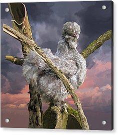 14. Cuckoo Bush Acrylic Print