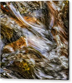 Fine Art Nature Photography By Joanne Bartone Acrylic Print