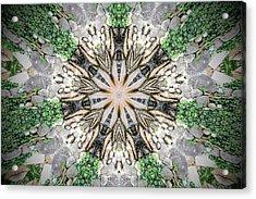 Kaleidoscope Acrylic Print by Joe Oliver