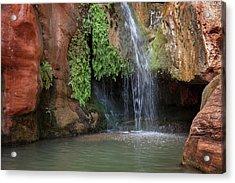 Usa, Arizona, Grand Canyon National Park Acrylic Print