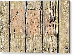 Wood Background Acrylic Print by Tom Gowanlock