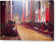 141220p194 Acrylic Print by Arterra Picture Library