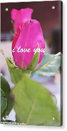 Rose For You Acrylic Print by Gornganogphatchara Kalapun