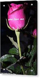 Rose For You  Acrylic Print by Gornganogphatchara Kalapun