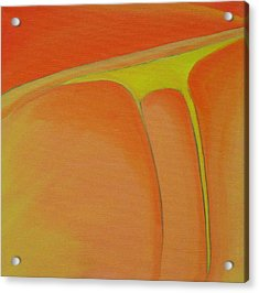 144 'jordan Leather' Acrylic Print by Gregory Otvos