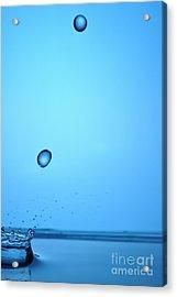 Splashing Water Droplet Acrylic Print by Sami Sarkis