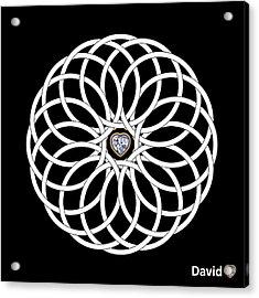 16 Circles Acrylic Print by David Diamondheart