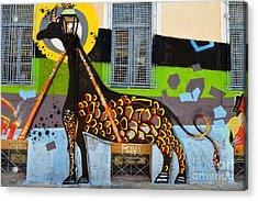 Graffiti On A Wall Acrylic Print
