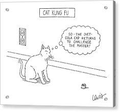 Cat Kung Fu Acrylic Print