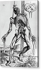 16th Century Illustration Of A Suspended Corpse. Acrylic Print