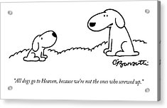 All Dogs Go To Heaven Acrylic Print by Charles Barsotti