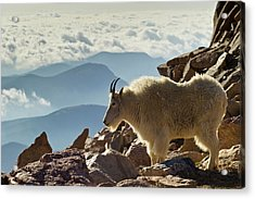 Usa, Colorado, Mount Evans Acrylic Print