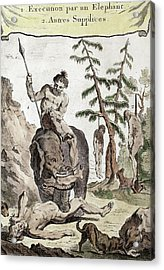 1750 Execution Torture By Asian Elephant Acrylic Print