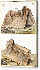 1750 Galapagos Tortoise Saddle Likeness Acrylic Print