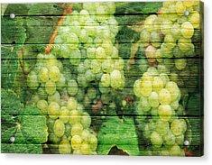 Fruit Acrylic Print by Joe Hamilton