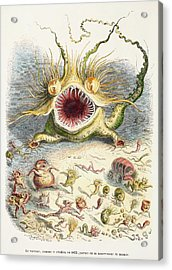 1833 Cholera Pandemic Grandville Cartoon Acrylic Print