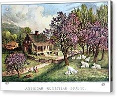 1860s American Homestead Spring - Acrylic Print