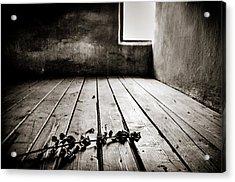 Auschwitz Acrylic Print by Mihai Ilie