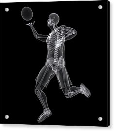 Basketball Player Acrylic Print by Sciepro/science Photo Library