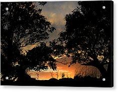 Sunset Acrylic Print by Barbara Walsh