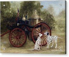 1905 Firehouse Dogs Acrylic Print by Stella Violano