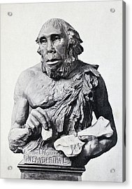1916 First 3d Neanderthal Reconstruction Acrylic Print