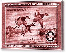 1935 American Bird Hunting Stamp Acrylic Print