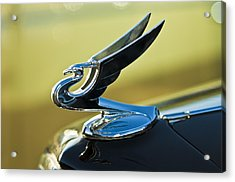 1935 Chevrolet Sedan Hood Ornament 2 Acrylic Print by Jill Reger