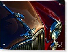 1953 Jaguar Mk7 Acrylic Print by Paul Ward