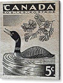 1957 Canada Duck Stamp Acrylic Print