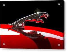1961 Jaguar Kougar Hood Ornament -0569c Acrylic Print