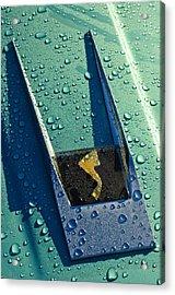 1963 Studebaker Avanti Hood Ornament Acrylic Print by Jill Reger