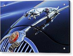 1964 Jaguar Mk2 Saloon Acrylic Print by Jill Reger