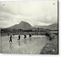 1965 1st Cavalry Division In Vietnam Acrylic Print by Historic Image