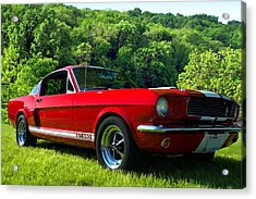 Acrylic Print featuring the photograph 1965 Mustang Gt350 by Tim McCullough