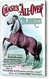 19th C. Chase's Horse Blankets Acrylic Print