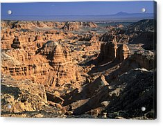 The Gobi Acrylic Print by Anonymous