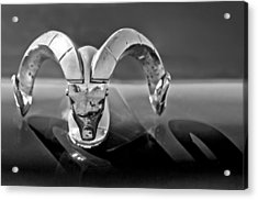 1952 Dodge Ram Hood Ornament Acrylic Print