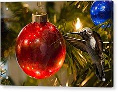 Reflecting On The Holiday Acrylic Print