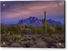 A Beautiful Desert Evening  Acrylic Print