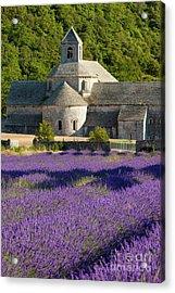Abbaye De Senanque Acrylic Print by Brian Jannsen