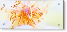 Abstract Flower Acrylic Print by Ulrich Schade