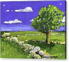 Tree In Maine Blueberry Field Acrylic Print